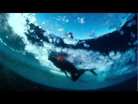 To The Arctic Featurette #3 - Life Under Water
