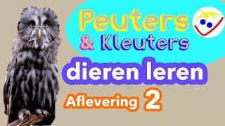 Dierennamen - Eerste Woordjes - Dieren Leren Aflevering 2 Peuters en Kleuters