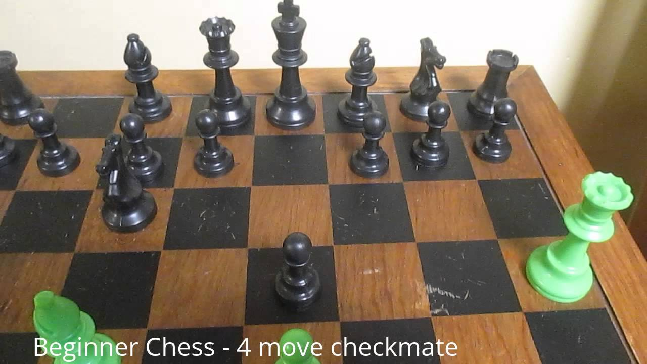 beginner free chess videos