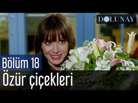 Dolunay 18. Bölüm - Özür Çiçekleri