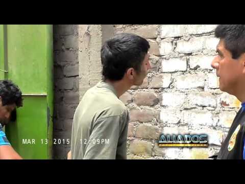 Aliados por la Seguridad: Los Injertos de  Quilla
