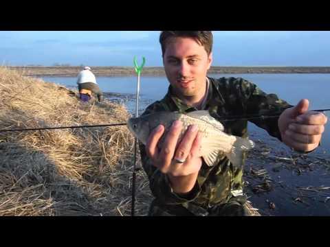 рыбалка на ахтубе в апреле 2017 видео