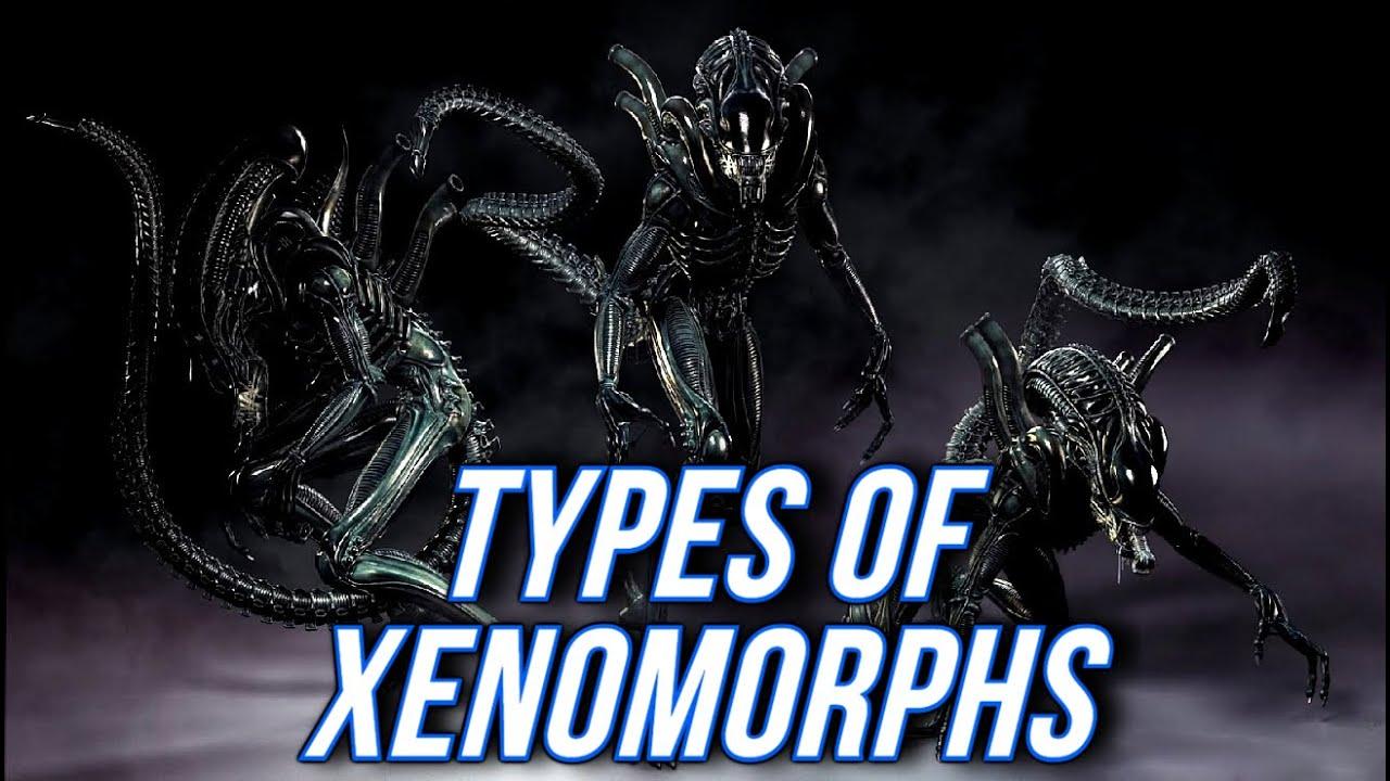 Xenomorph Vs Deacon Types of Xenomorph