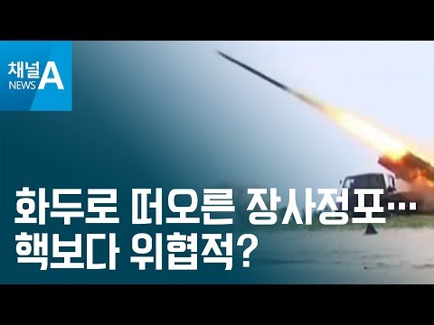 [뉴스분석]화두로 떠오른 장사정포…핵보다 위협적?