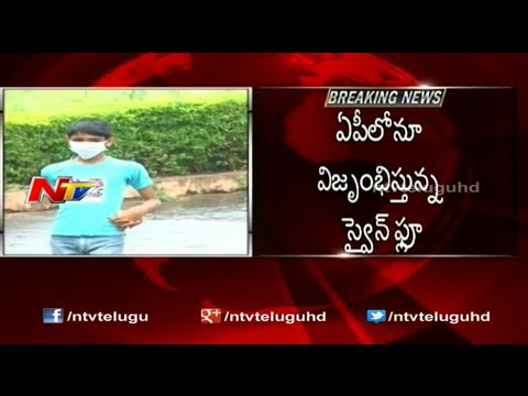 Swine Flu Hits Andhra Pradesh Hard