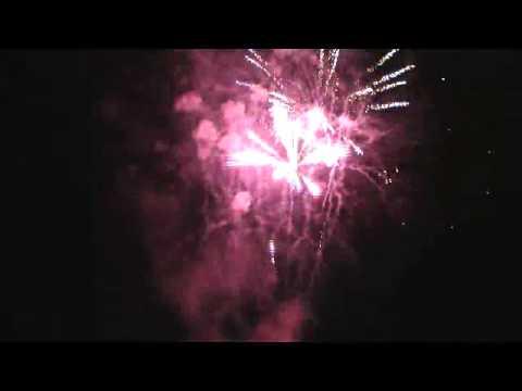 Coconut Tree by fireworks international