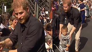 Hilarious moment Prince Harry stumbles across stray toddler in Rotorua, New Zealand | Newshub