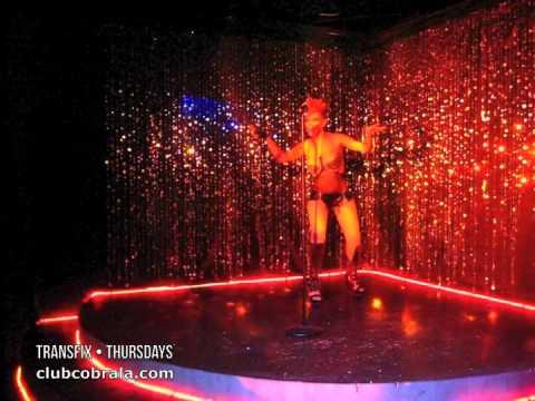 best latin gay porn