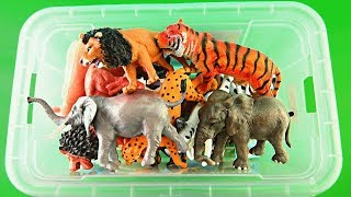 Box Of Toys Wild Zoo Animals Safari Toy Zoo Animal Names For Kids