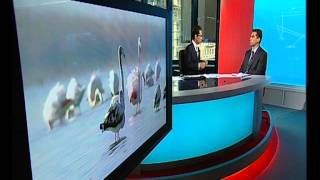Dr Babak Mirshahi's interview on Drought & Water resources- BBC Persian news- 4 July 2011