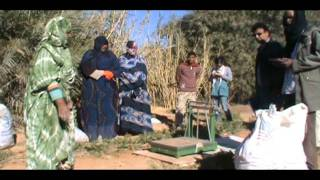 Proyecto Mejorar la Produccion Agricola de los Huertos de Dajla Smara N´jeila Huertos Familiares