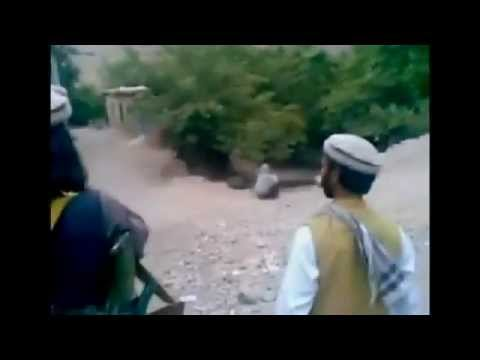 GRAPHIC Taliban Publicly Execute Woman for Adultery