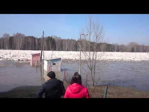 рыбалка в калтане видео