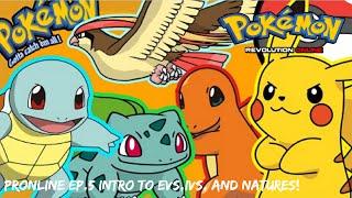 Pokemon Revolution Online - EP. 5 Intro to IVs/Evs/Natures