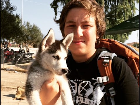 Greece: Syrian Aslan and his Puppy Rose