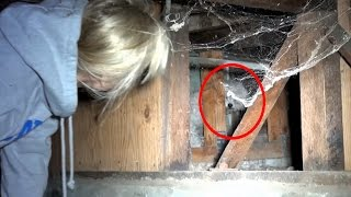 Rescuing a scared homeless poodle underneath a house.  Please share this challenging rescue.