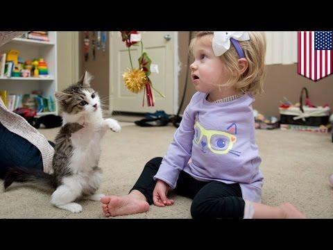 다리를 하나 잃은 고양이, 팔 한쪽을 절단한 2세 어린이와 절친 돼