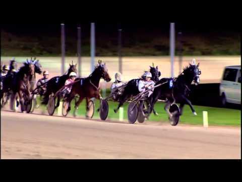 Vidéo de la course PMU PRIX MAIN WISE AS CHALLENGE