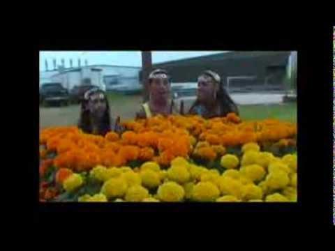 Terry Gajraj - Dil Mora (Waistbreaker Song)