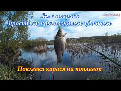 озера красноярска где ловят карася