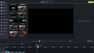 Camtasia 9: How to make moving object.