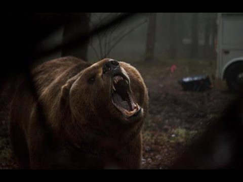 Grizzly Trailer 2014 HD Billy Bob Thornton James Marsden Piper Perabo
