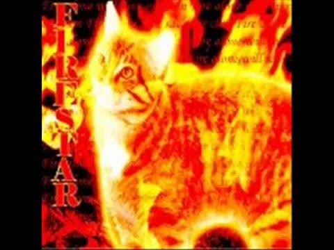 Bluestar Firestar Bluestar's Firestar's