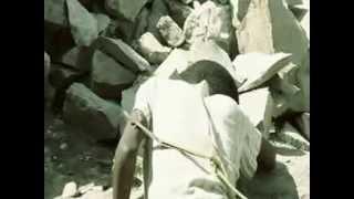 """Tariku ft Bini Dana - Ney Beaman """"ነይ በአማን"""" (Amharic)"""