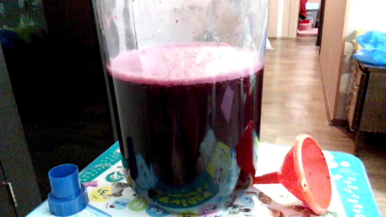 Как сделать свое вино из винограда изабелла 576
