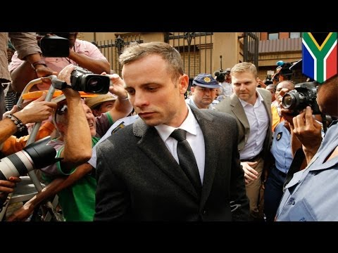 Oscar Pistorius shooting of Reeva Steenkamp: affidavit animated