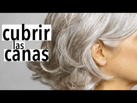 Cubre las canas de manera natural en casa / Cover gray hair naturally at home!