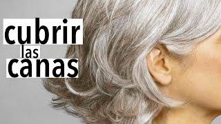 Video.clip4play.com - Remedio-para-curar-los-quistes-del-senowmv