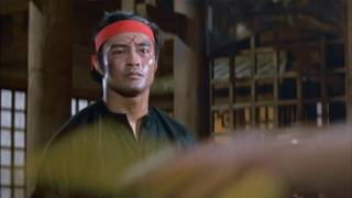 Bruce Lee in Game Of Death  'Choked Up' HD  1978