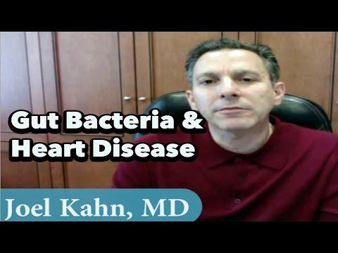 Gut Bacteria, Heart Disease & High-Fat Diets w/ Joel Kahn, MD