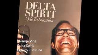 Watch Delta Spirit Strange Vine video