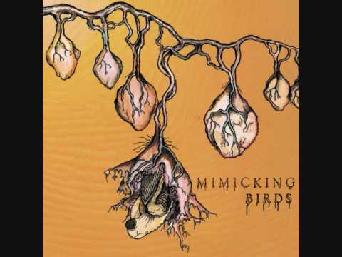 Mimicking Birds - Rivers Veins And Roots