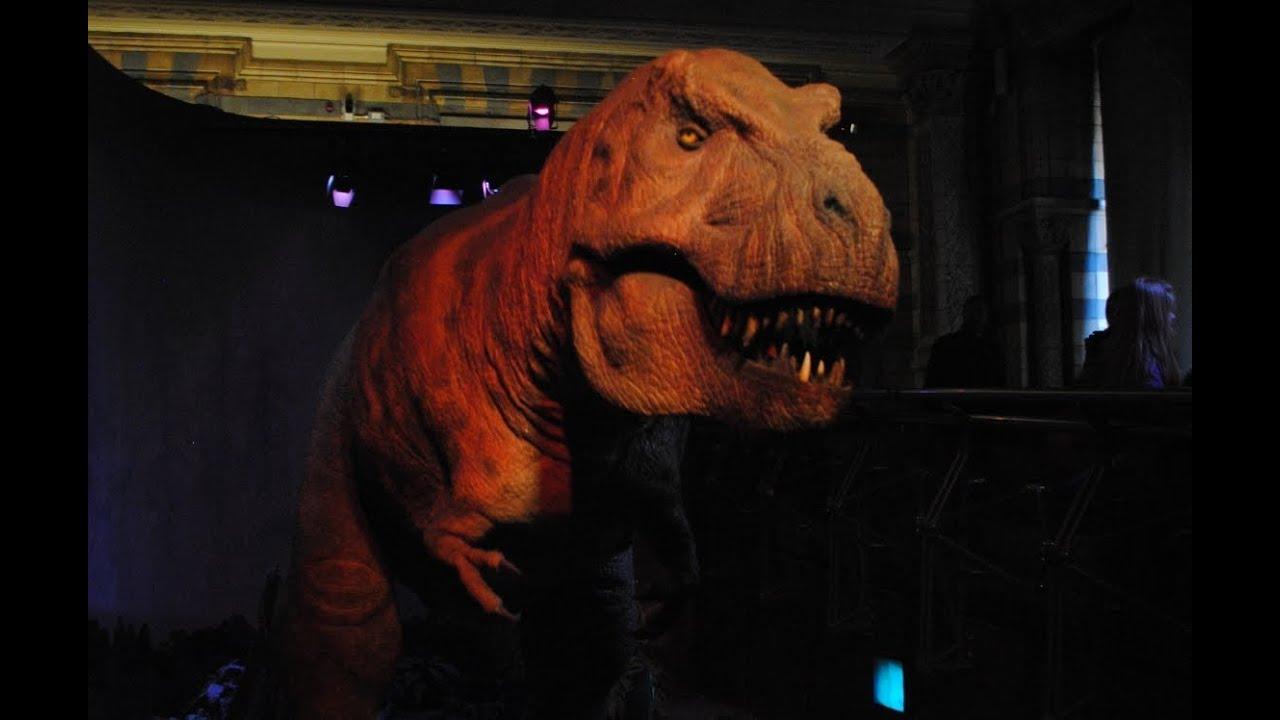 Museum Of Natural History Dinosaur Movie