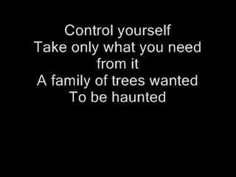 kids-mgmt (with lyrics)