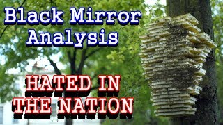 Black Mirror Analysis: Hated In The Nation