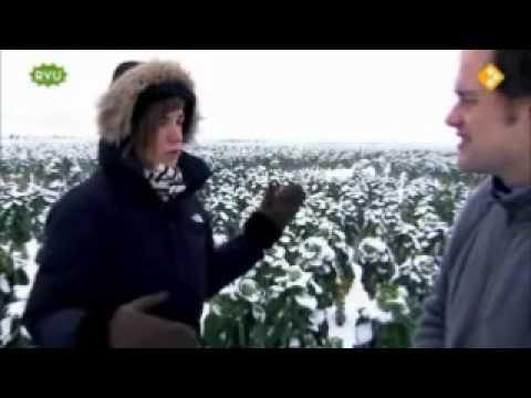 Willem&Drees bij Keuringsdienst van Waarde
