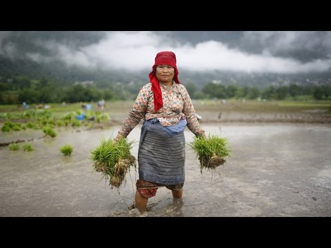 COP21 Treaty Draft Excludes Gender Equality Even Though Women are Most Impacted by Climate Change