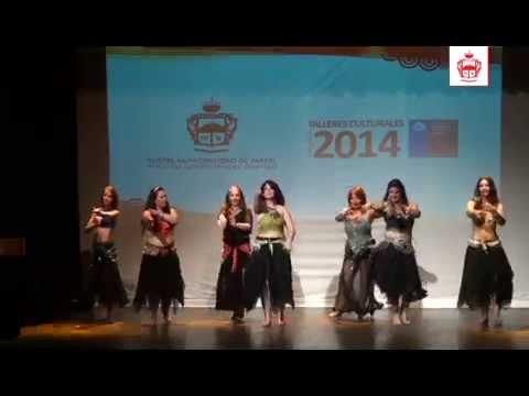 Finalización Talleres Culturales Parral 2014