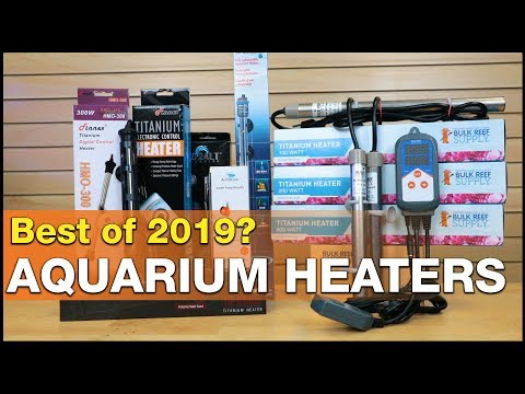 Wait...did BRS just make the BEST aquarium heater of 2019?