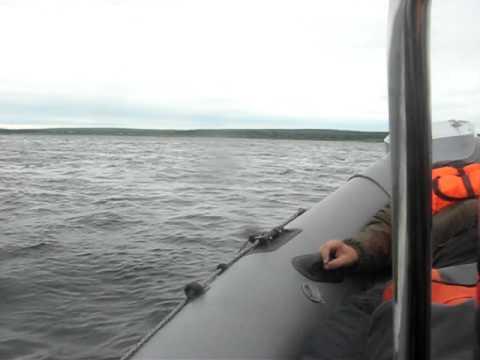 рыбалка видео 2017 году на енисее
