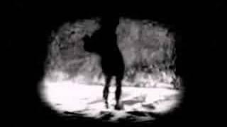 Линда - Ворона (биопсихоз remix)