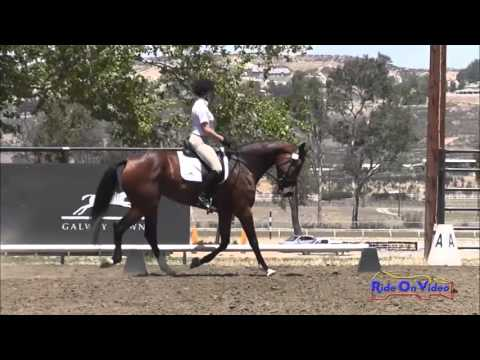 173D Robyn Fisher Nash Novice Horse Dressage Galway Downs May 2013