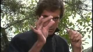Những màn trình diễn ảo thuật của David Copperfield   YouTube