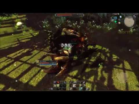 RaiderZ.EU - Master of the Garden (of Twilight)