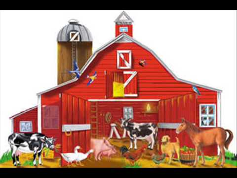 Animal farm Music Videos