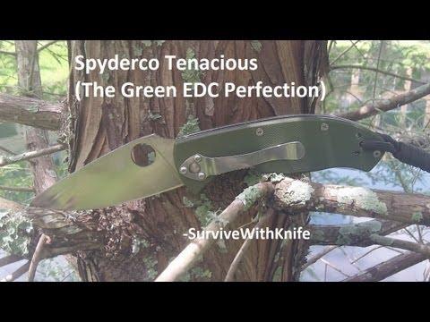 Green Spyderco Spyderco Tenacious The Green